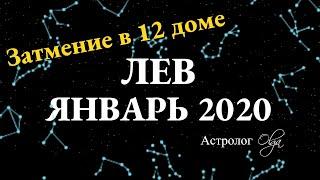ЛЕВ ГОРОСКОП на ЯНВАРЬ 2020. Астролог Olga
