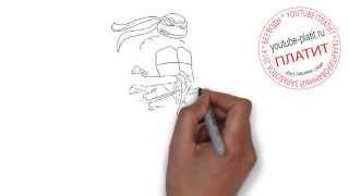Как рисовать черепашек ниндзя видео  Как легко простым карандашом нарисовать черепашку ниндзя(Как правильно нарисовать героев мультфильма Черепашки Ниндзя карандашом поэтапно. Мы на реальных примера..., 2014-08-30T05:41:44.000Z)