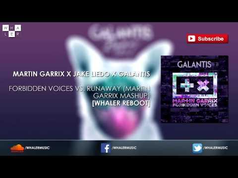 Martin Garrix vs. Galantis - Forbidden Voices vs. Runaway (Martin Garrix Mashup) [Whaler Reboot]