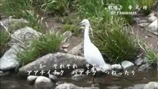 白鷺三味線 高田幸吉 隠れた名曲...Part_76 Cover 華之将