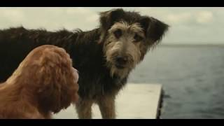 Lady And The Tramp (Walt Disney Studios   Official Trailer #2)
