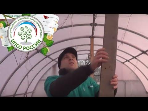 Макунас Антон Иванович, садовод сортоиспытатель из села