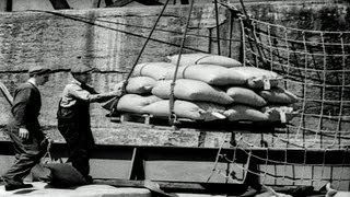 HD Stock Footage UNRRA Canada Delivers Food to Post WWII Europe 1948