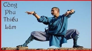 वानिकी की विस्तृत कमी || सर्वश्रेष्ठ चीनी मार्शल आर्ट फिल्म  Part  26