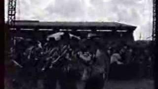 Banda Toro santa Anita-2