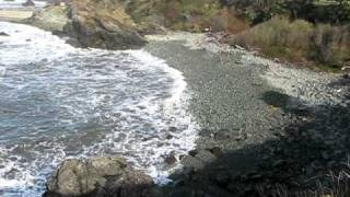 Crescent City Tsunami 3-11-2011