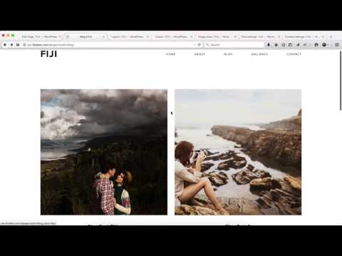 Flothemes :: Fiji -  Blog Settings