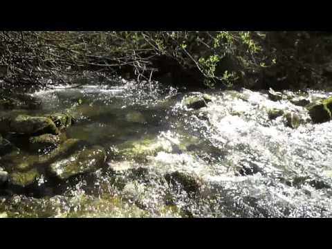 Suono di un RUSCELLO / Relaxing Sounds of Water Stream