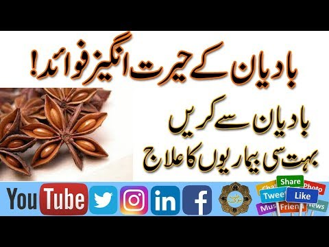 Badian Phool ke Fawaid | Badiyan Ka 10 Hairat Angez Fawaid | Anise Seed Benefits in urdu\Hindi