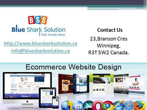 Get an effective online presence with ecommerce website Winnipeg companies