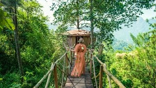 The Ultimate Tree House in Sri Lanka