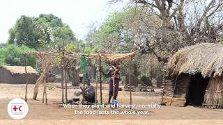 Schools in drought-hit Malawi receive food programme