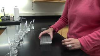 HChem - Lab - Chemical Properties of Periodic Table Families
