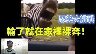 【忍笑大挑戰03】之  搞笑動物篇