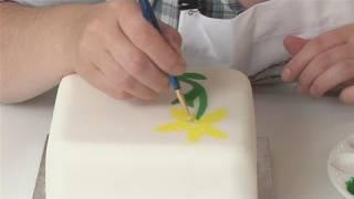fondant cake by food fusion