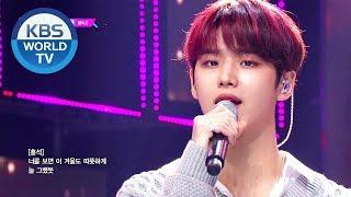 PENTAGON (펜타곤) - Camellia (동백꽃) [Music Bank / 2020.02.21]