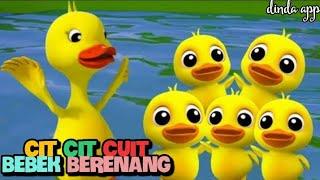 Lagu Cit Cit Cuit | Bebek Lucu Berenang | Lagu Anak Indonesia Populer | CIT CIT CUIT BEBEK BERENANG