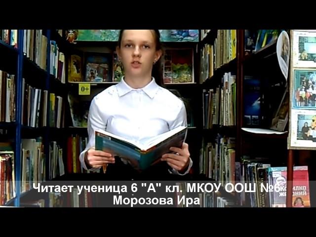 Изображение предпросмотра прочтения – ИринаМорозова читает произведение «Железная дорога» Н.А.Некрасова