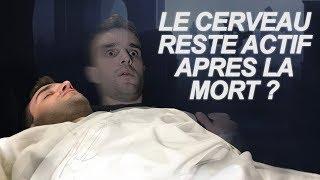 LE CERVEAU RESTE ACTIF APRÈS LA MORT ? Vrai Ou Faux #43 thumbnail