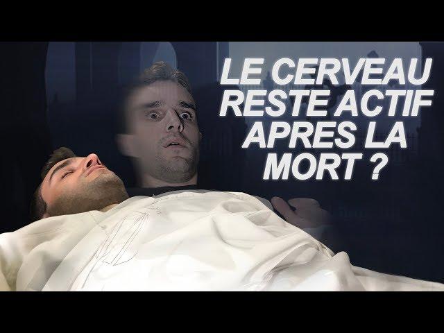 Dr nozman le cerveau reste actif apres la mort ? vrai ou faux 43
