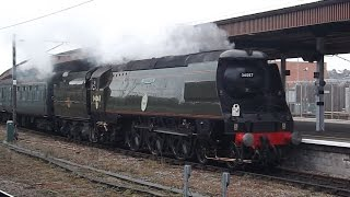 Bullied Pacific Heaven in Yorkshire Saturday 14th February 2015