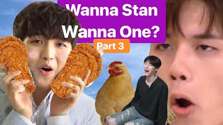 Video could wannaone possibly get any weirder? download MP3, 3GP, MP4, WEBM, AVI, FLV Oktober 2017