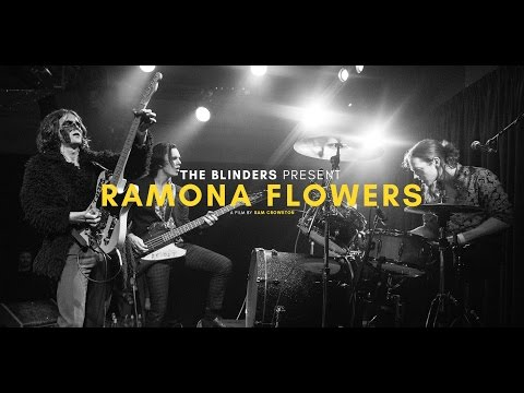 The Blinders - Ramona Flowers