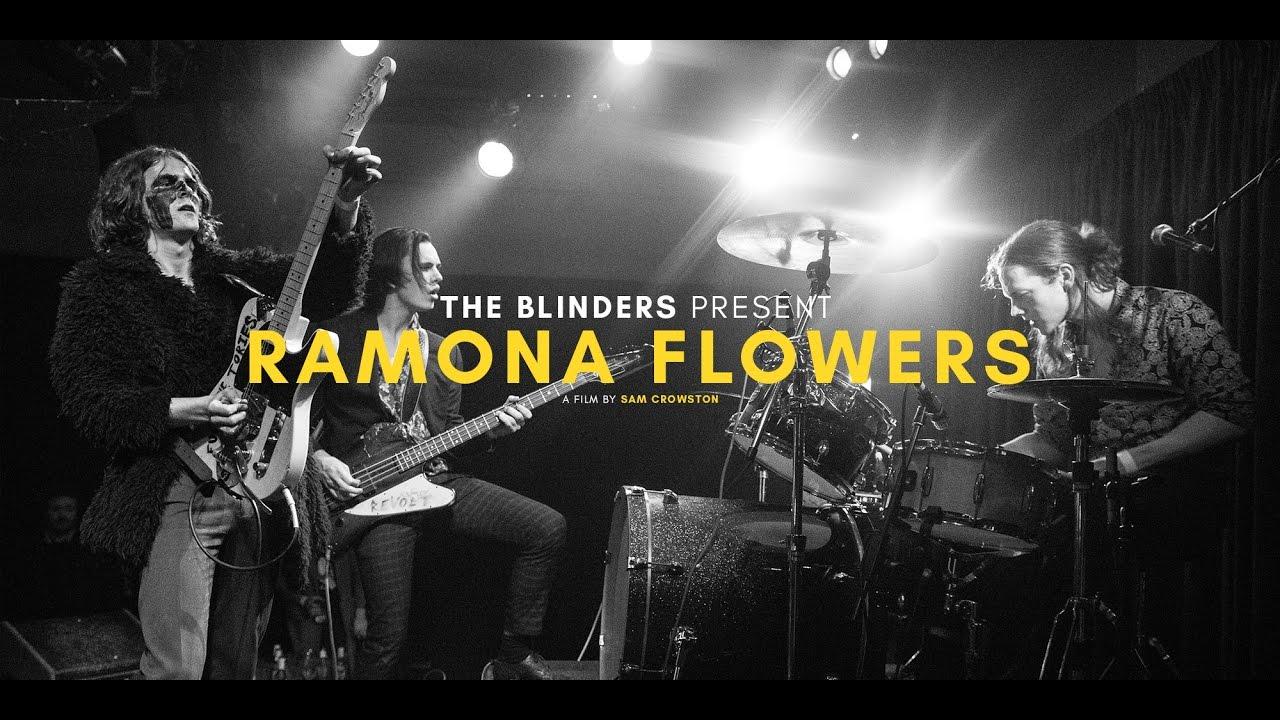 Download The Blinders - Ramona Flowers