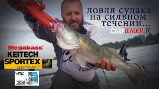 Ловля судака на сильном течении.Отводной поводок-Мegabass-Keitech-Sportex+РИБ Фортис 390