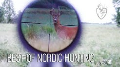 NH: Best Rifle Shots of Nordic Hunting | 10K Special