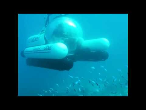 Uber launches submarine service to Great Barrier Reef | ABC News