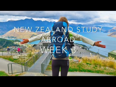 New Zealand Study Abroad : Week 3