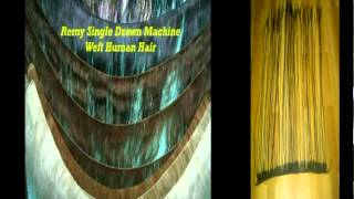 INDIAN REMY HUMAN HAIR EXPORTER
