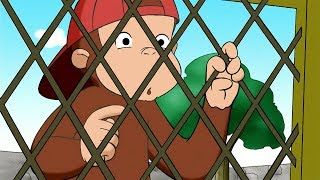 Curious George 🐵 George's Bunny Hunt 🐵Full Episode 🐵 Videos for Kids 🐵 Kids Cartoon