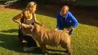 Animal rescue - abandoned baby white rhinos - BBC wildlife thumbnail