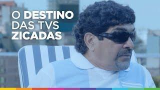 Magazine Luiza manda TVs zicadas pra Argentina #ZicaPraArgentina thumbnail