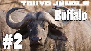 Tokyo Jungle: Buffalo Survive over 100 years Part 2 of 4