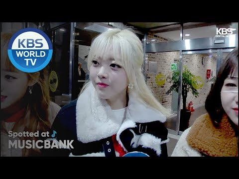 [Spotted at Music Bank] 뮤직뱅크 출근길 - Straykids, WEKI MEKI, APRIL, TWICE[2018.11.09]