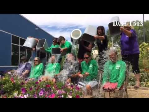 Staff of the San Juan Center for Independence participate in the ALS Ice Bucket Challenge.