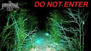 Do Not Enter This Haunted Forest At Night… Here's Why | The Paranormal Files