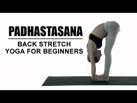 padhastasana  back stretch yoga for beginners  youtube
