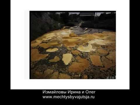 Какова роль воды и минеральных солей в организме