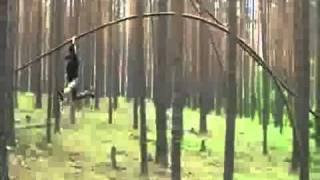 Rosyjski skoczek / Taniec z drzewami