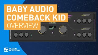 Comeback Kid by Baby Audio | Analog Flavour Delay VST Plugin | Tutorial Review of Main Features