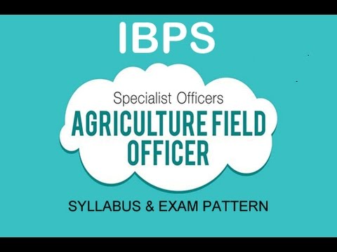 Detailed syllabus information for IBPS AFO (Hindi)
