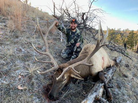 Montana Rifle Elk Hunt (Part 2) 817 Yard Shot