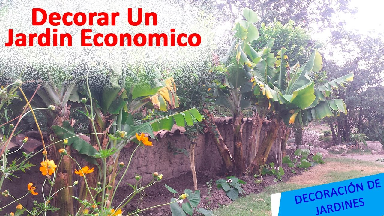 Como decorar un jardin de forma economica youtube for Ideas para decorar el jardin de mi casa