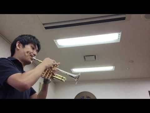 Penny Lane piccolo trumpet ペニー・レイン ピッコロトランペット