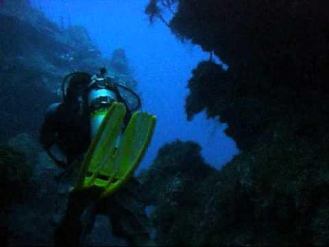 Cayman 2011.wmv