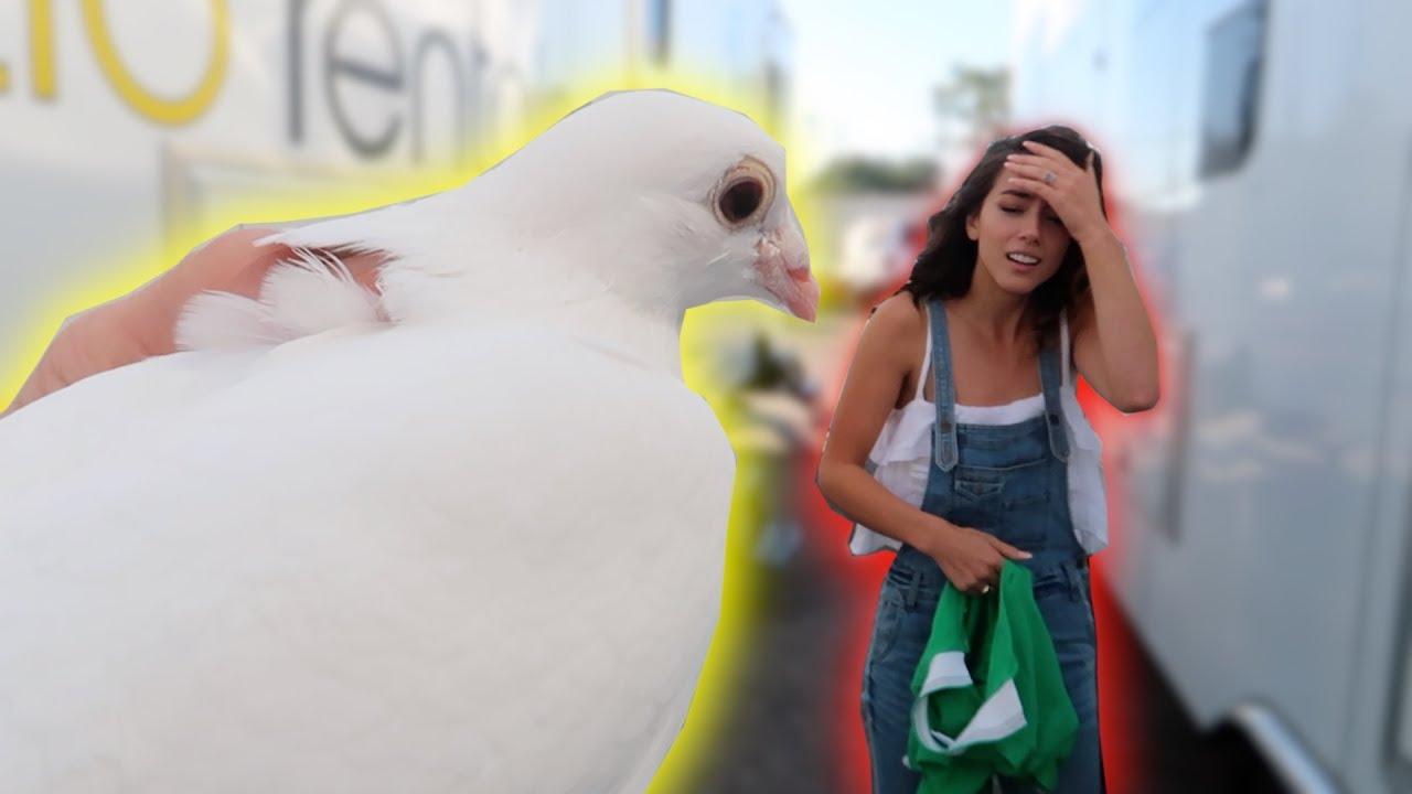 live-bird-prank-on-my-castmates-freakout